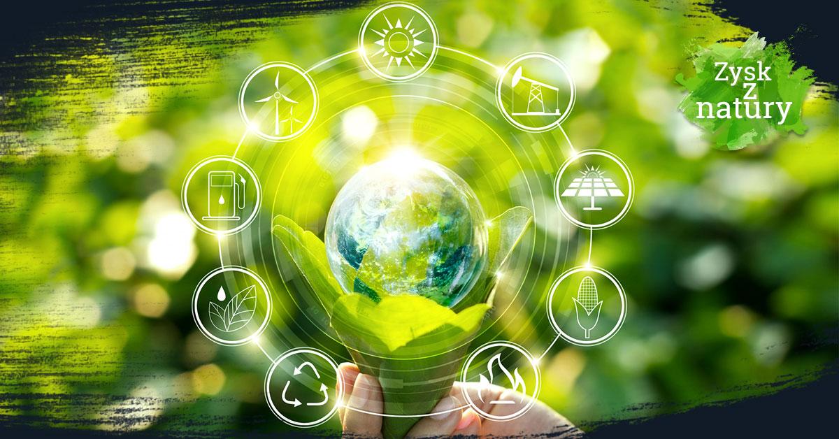 Biznes ekologiczny