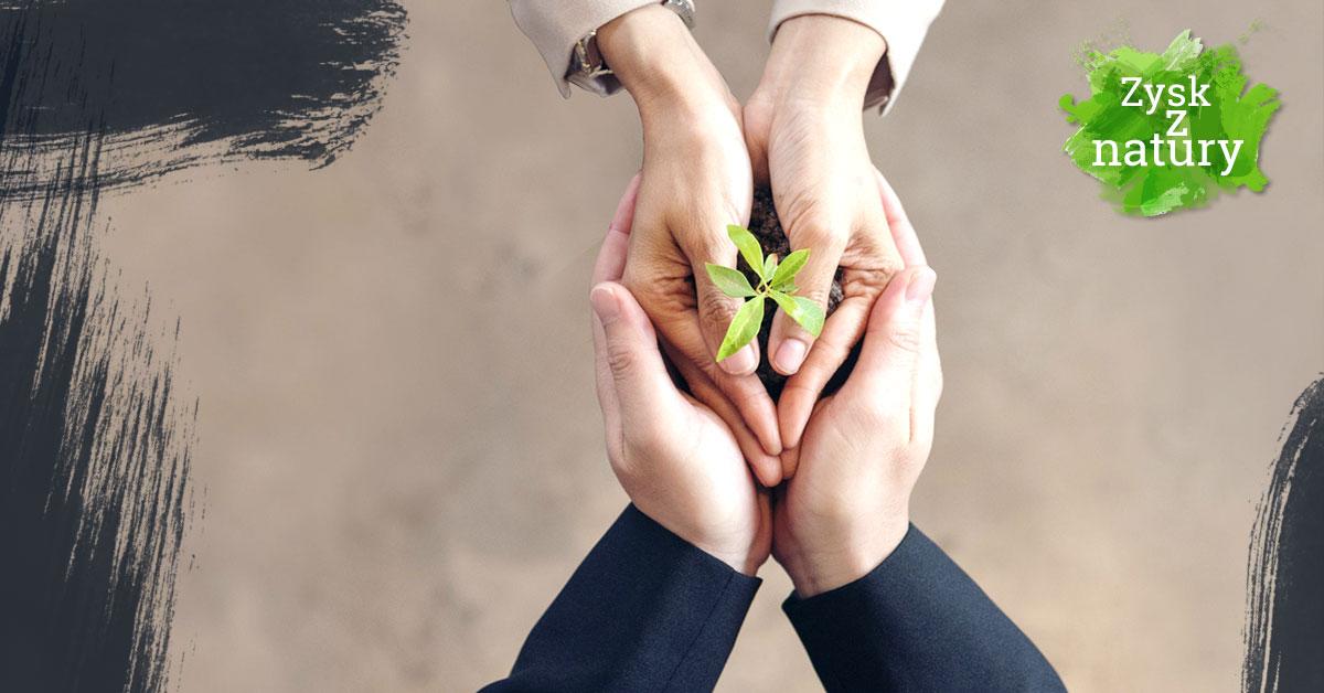 Dlaczego warto budować ekologiczny wizerunek firmy